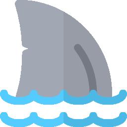 little-fins